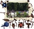 Wildpark schwarze Berge 2012